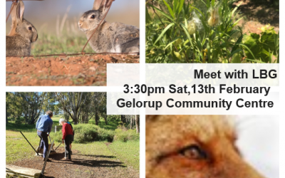 LBG Meeting at Gelorup Community Centre to Discuss Declared Pest Management