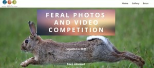 Calling ALL Photgraphers _ Feral Animals Photos & Videos Contest – Enter by 30th April
