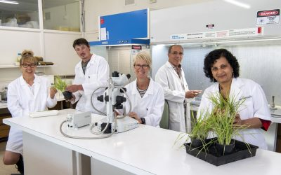 Celebration of Science Week 2021  –  New Publication Shares Highlights of WA Agriculture & Aquaculture Research & Development Projects